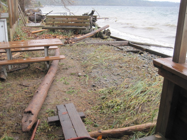 High tide tossed logs up over a bulkhead like matchsticks