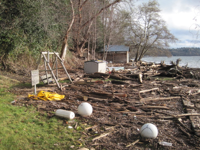 This was all grass and now it is a field of debris and driftwood