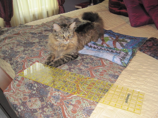 Reggie supervising the layout of the backing.