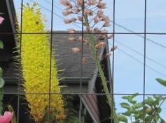 Golden garden spear
