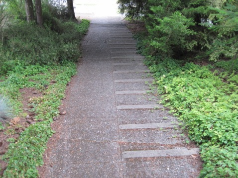 Steep Sidewalk with mini steps
