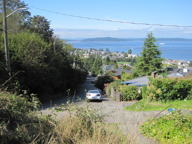 View of Alki -  Schmitz Park is on the left