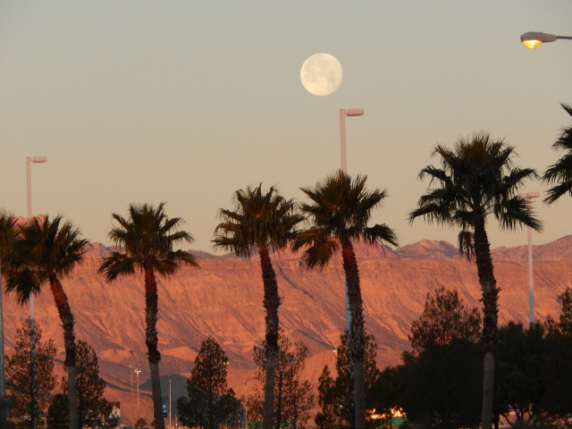 Moonrise at Dawn in the Desert