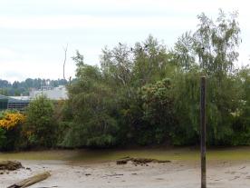 Muddy Kellogg Island protects Crow Family