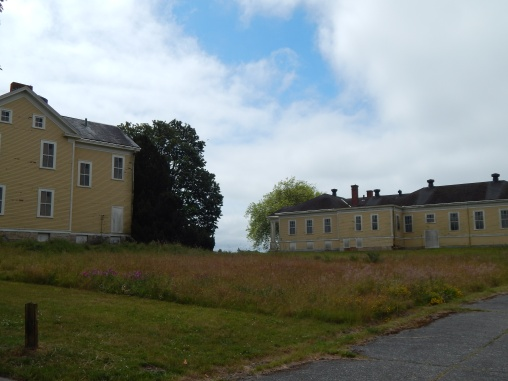 Fort Lawton old road to back of Admin Buildings
