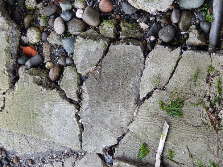 Wood grain in cement -