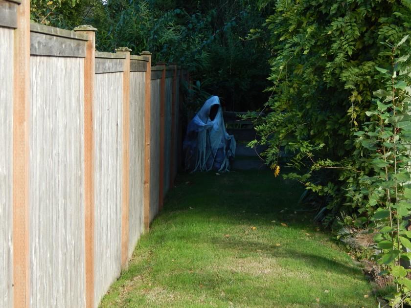 The grim reaper awaits his next victim