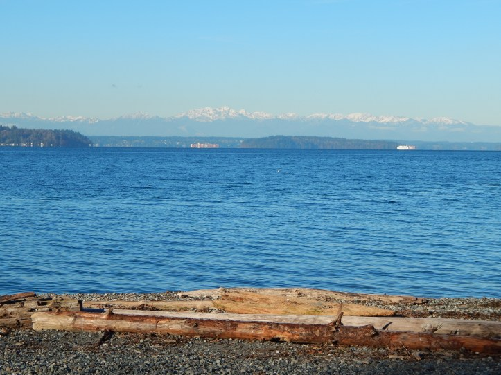 Glorious Blue Puget Sound from Seahurst Park