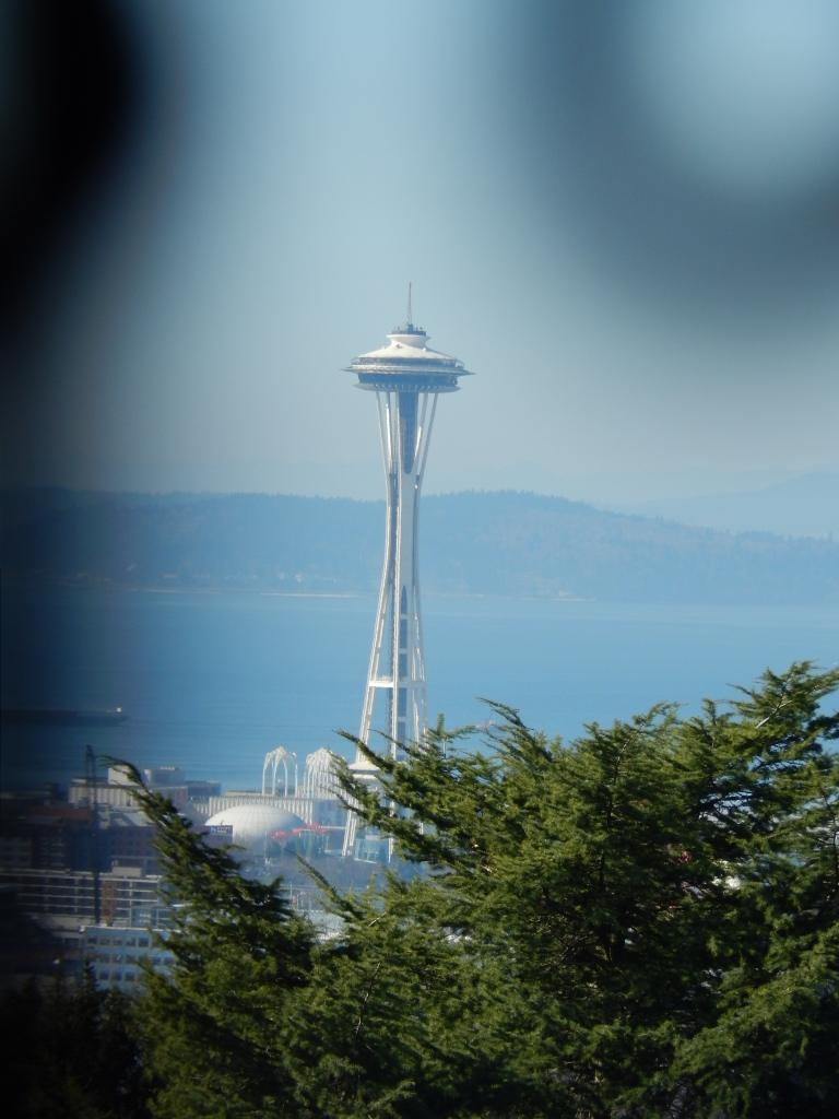 Space Needle from Volunteer Water Tower