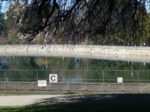 Fenced Reservoir that crows can enjoy