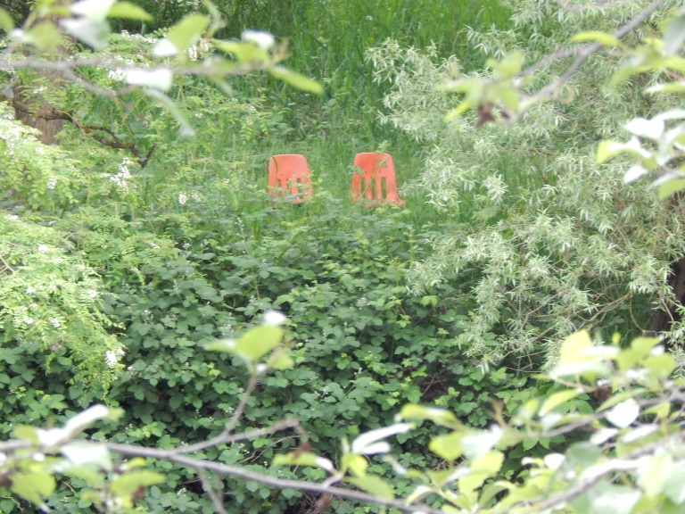 Orange chairs watching me