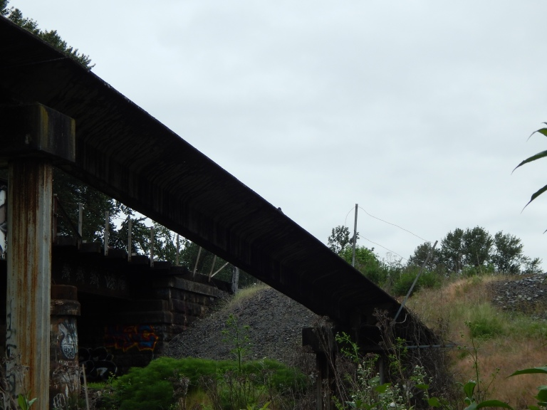 Old Pedestrian bridge between RR tracks at Black River - see the crow?