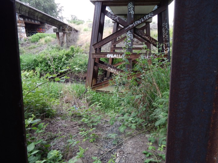 Bridge structures with graffiti over muddy Black River