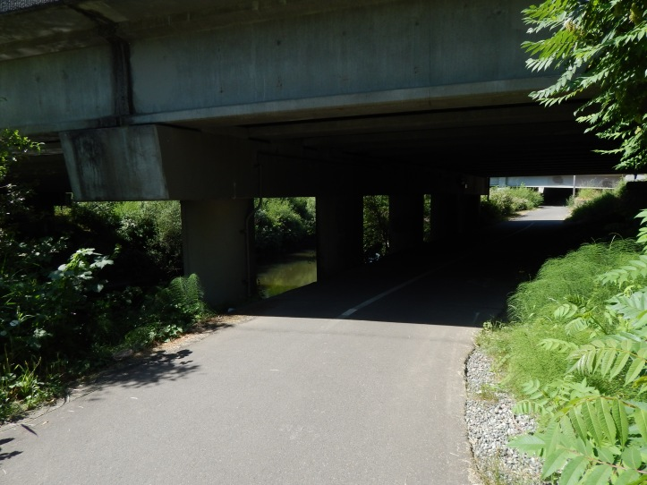 West Valley Hwy/Interurban way Bridge over Green River & I405 ramp