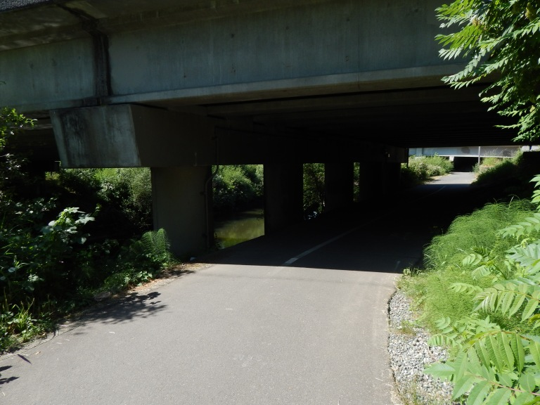 West Valley Hwy/Interurban way Bridge over Green River & I405 ramp