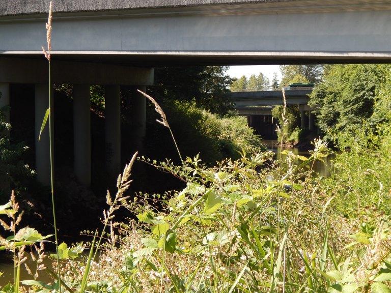 Bridges over Green River - I 405 & Southcenter Blvd