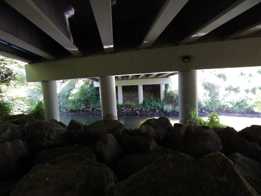 Green River under Southcenter Blvd