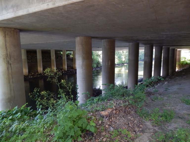 Pillar of bridge over Green River under I-405