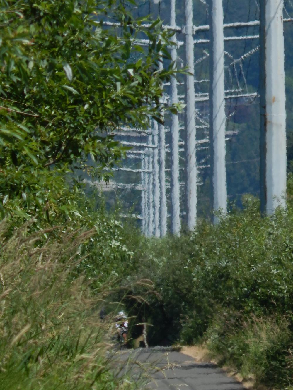 Power lines create optic illusion on Interurban trail