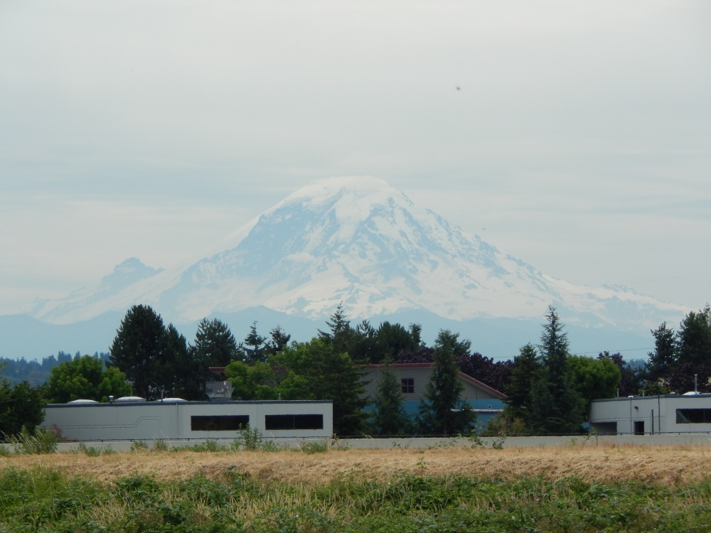 Mt Rainier view from old Briscoe Site