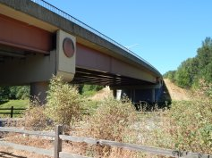 Trail goes under mystery bridge