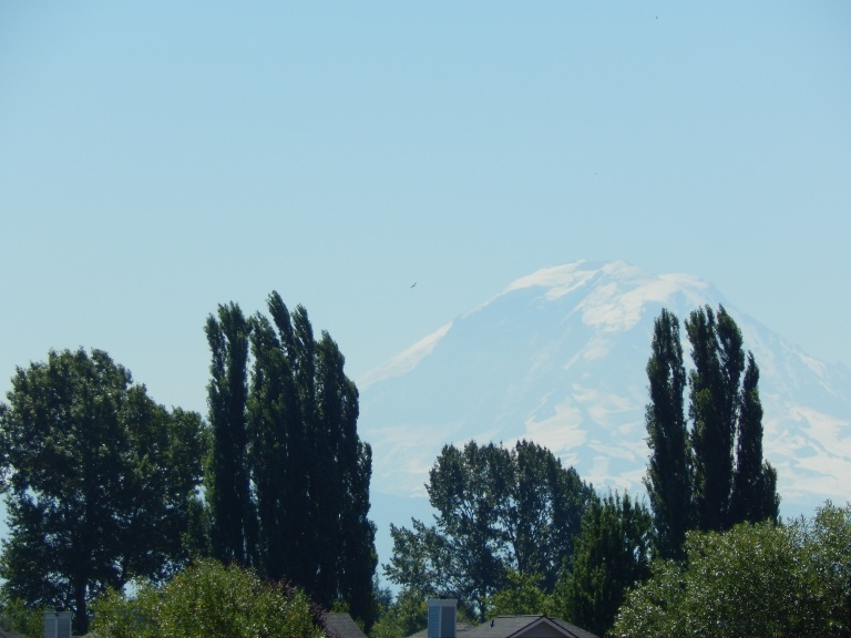 Mt Rainier always there