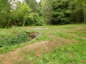 Old Pond survives - see the driveway too?