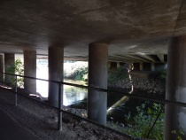 Pillars hold up Freeway 167.