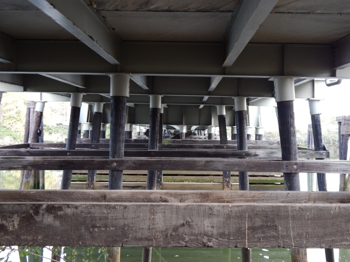 Underneath Oxbow Bridge