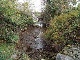 Hamm Creek at Turning Basin 3