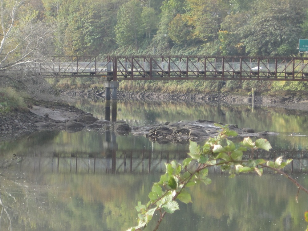 Duwamish Rock & Green River Trail bridge