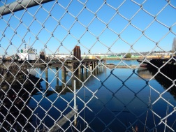 Fences and piers on the Duwamish River