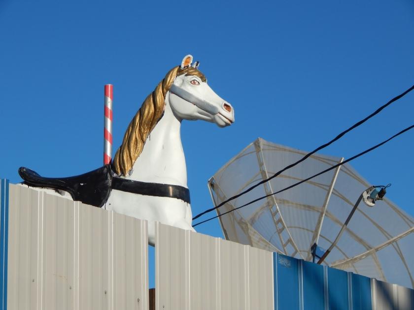 Go Figure - a Carousal Horse