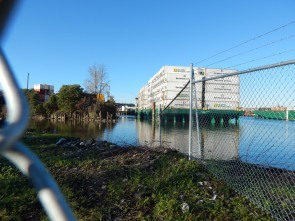 Duwamish River South of 1st Ave So Bridge