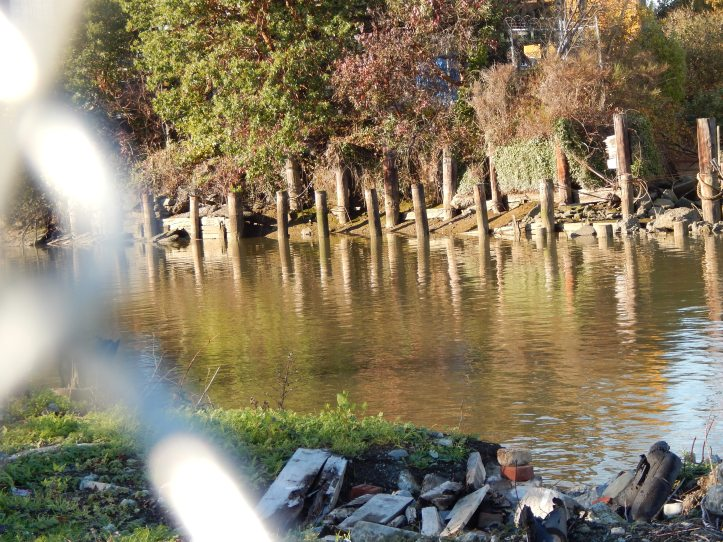 Remnants of Duwamish River original course