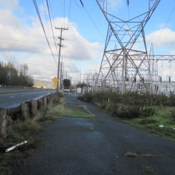 Power lines and road next to Duwamish
