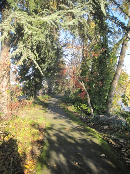 Path along Duwamish River Southpark