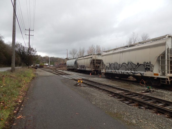 trail disappears between these two railroad cars