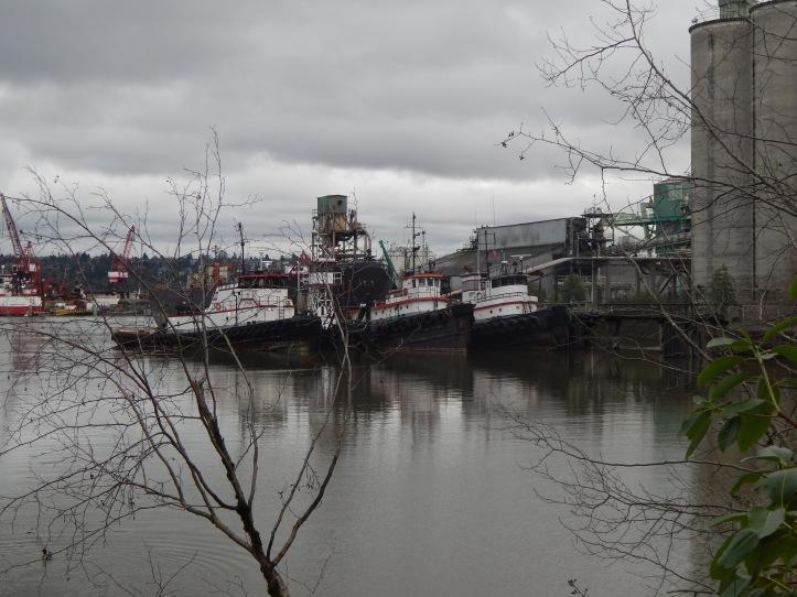 Tugs nestled near Lafarge cememt plant