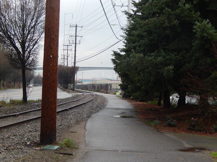 Duwamish River Trail