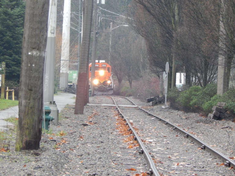Freight train working along the Duwamish River.