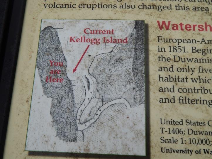 US Coast & Geodetic Survey Sheet T-1406 - Duwamish Bay, Washington Territory 1874 - courtesy U of WA Burke Museum
