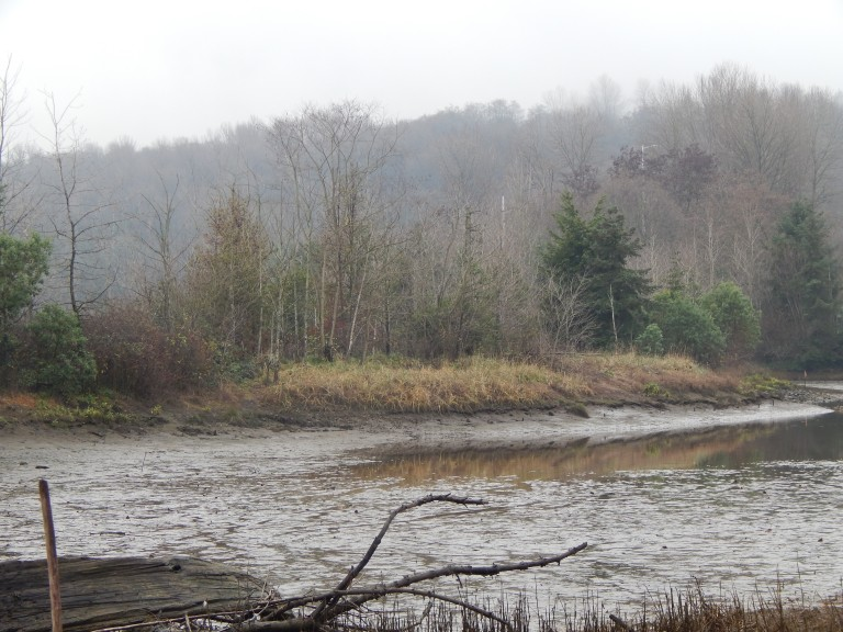 tidal marsh created at Herring's House