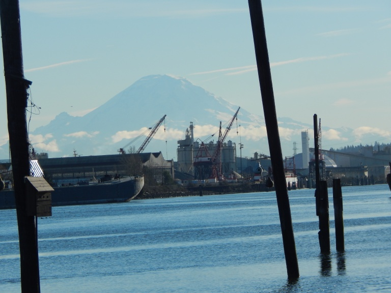 Duwamish & Mt Rainier from T-105