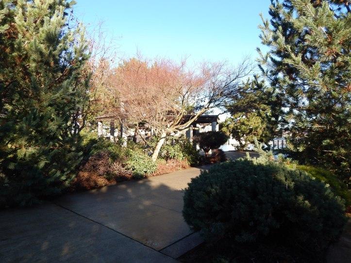T-105 Picnic area & garden