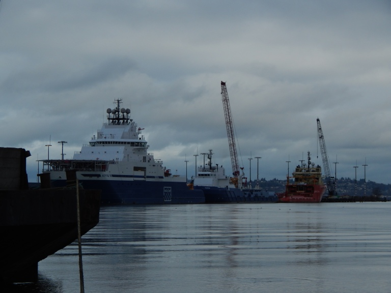 Ships moored at T-5 on Duwamish waterway