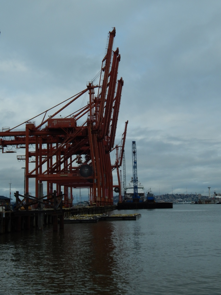 Cranes and Space Needle in background