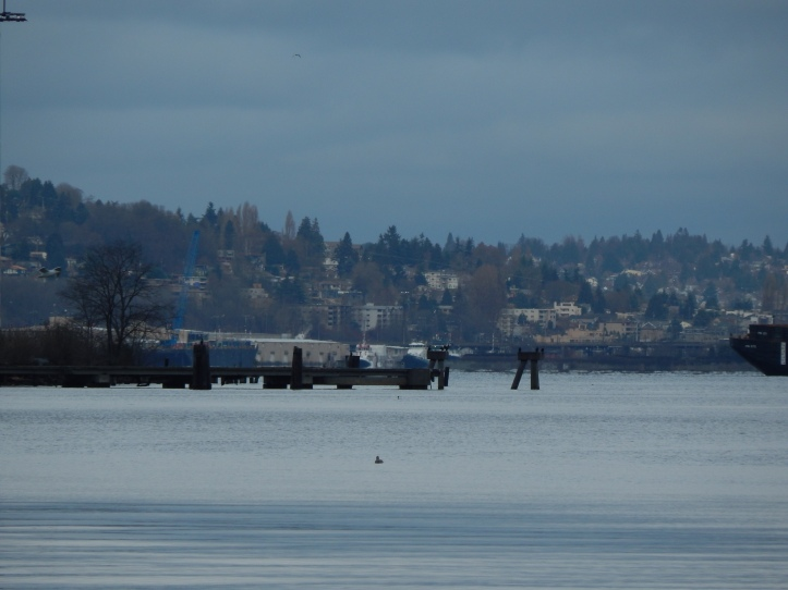 End of T-7 and the mouth of the Duwamish