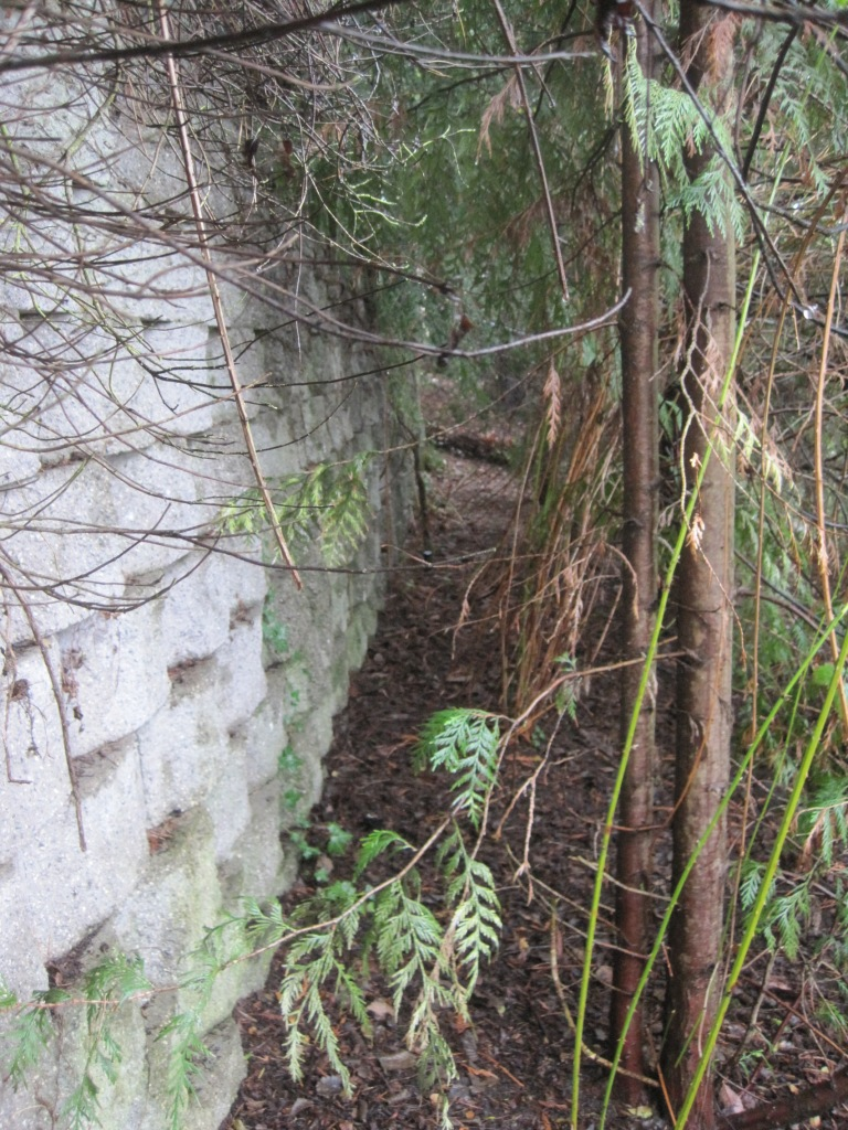 Off trail by block wall