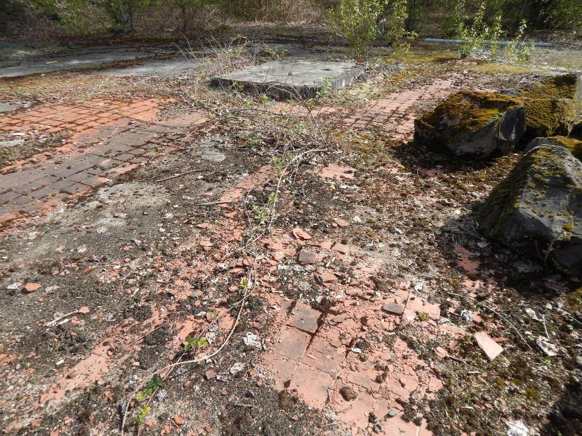 Floor of Club House where found tile - ruins of Longacres